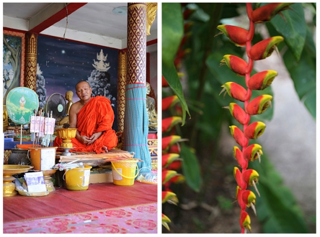 monk & flower